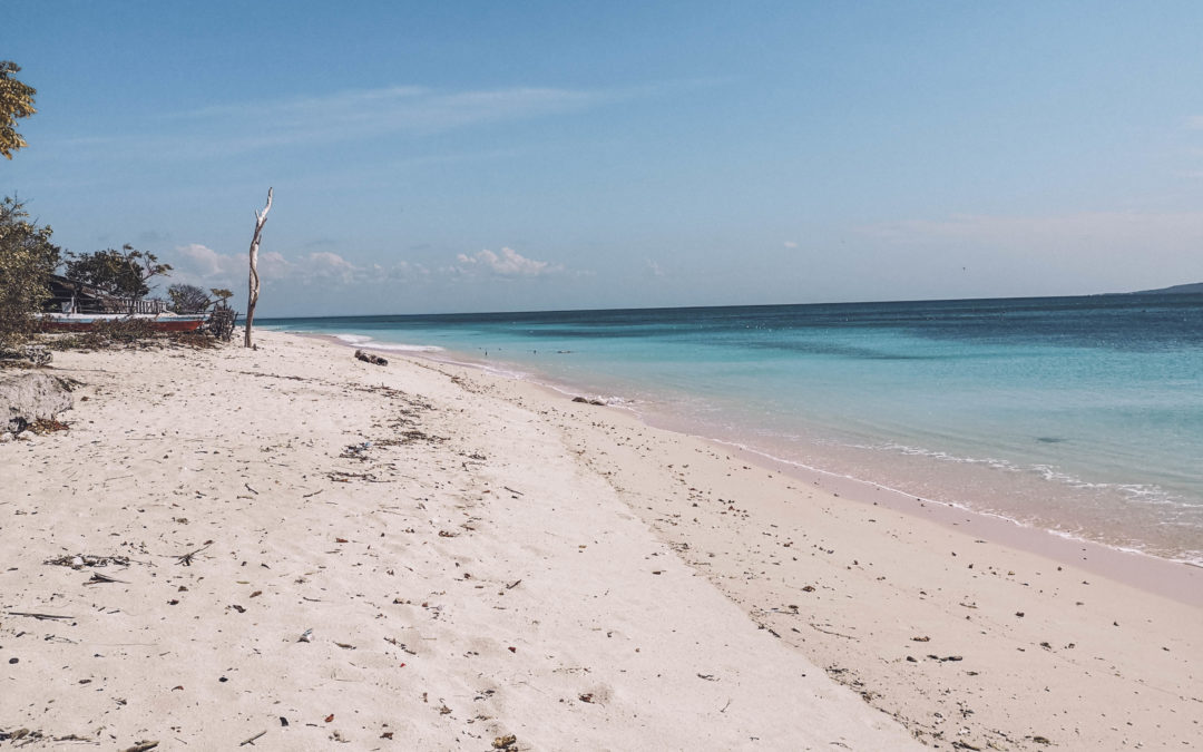 INDONESIE –  Kupang/Ile de Rote