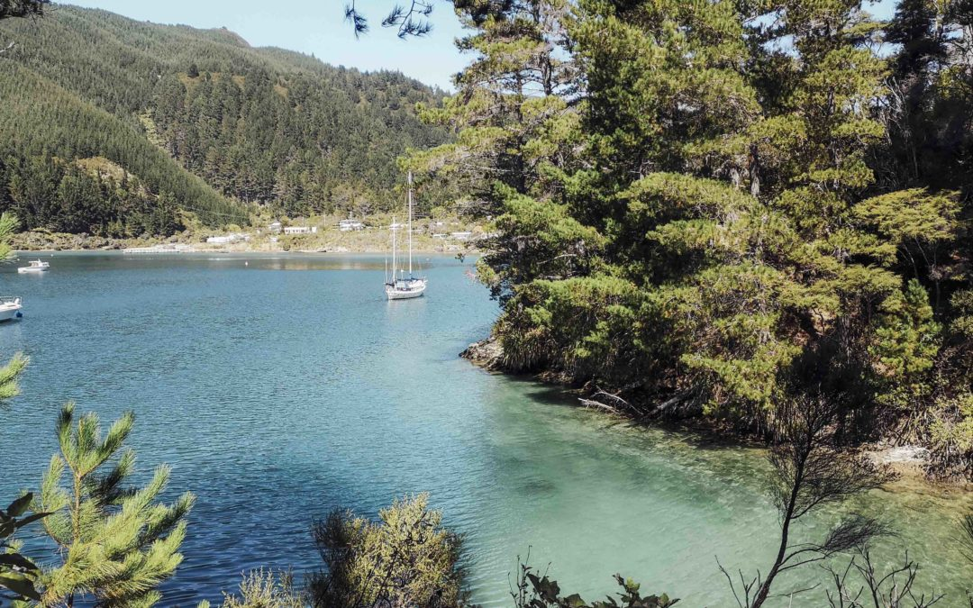 NOUVELLE ZELANDE – Nelson lake, Marlborough, Abel tasman, cape Farewell