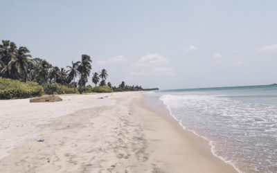 Sri Lanka – Nilaveli à Négombo