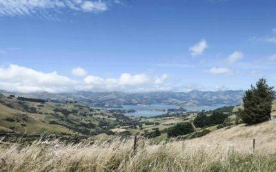NOUVELLE ZELANDE – Christchurch et Akaroa