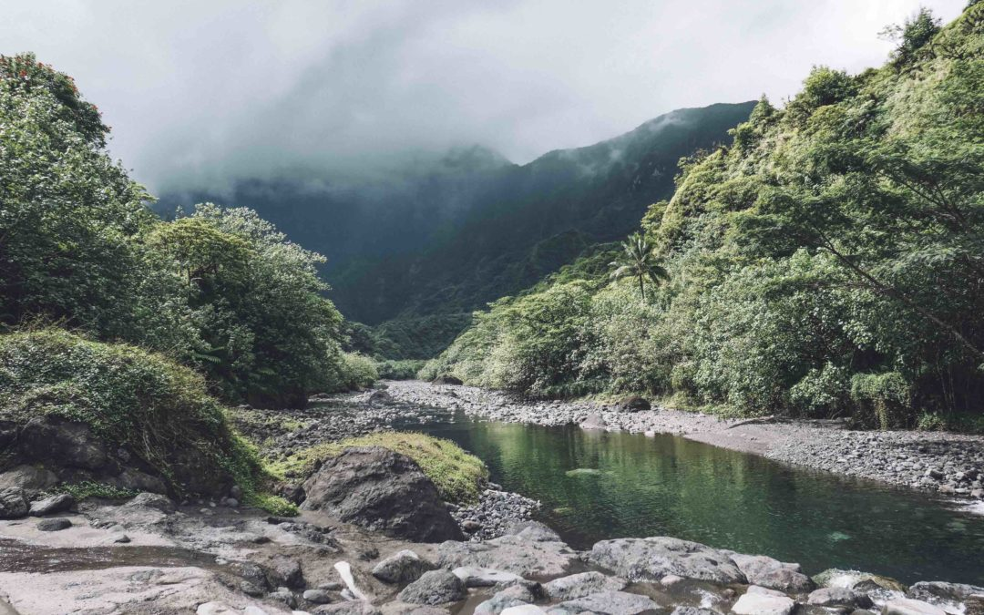 POLYNESIE FRANCAISE – Tahiti, tour de l'ile en voiture 8 jours backpacker